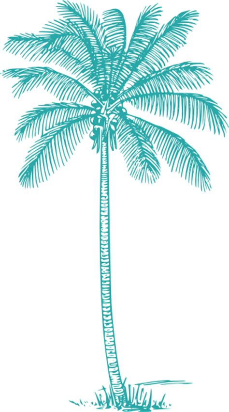Coconut-palm-tree Teal Clip Art at Clker