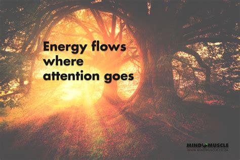 Energy flows where attention goes - 5th Place